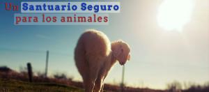 Un Santuario Seguro para los Animales